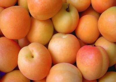 Naše meruňky